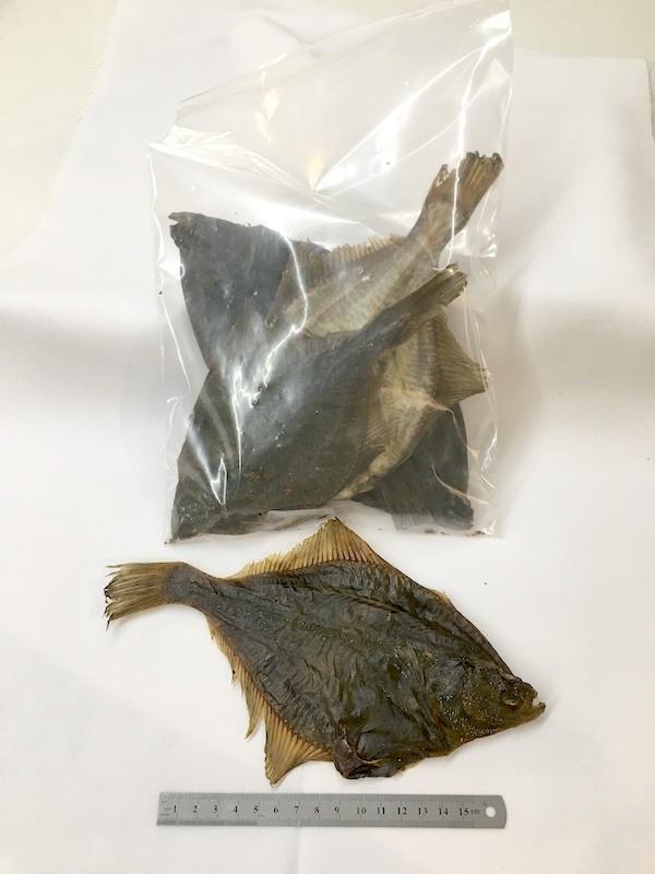 Trockenfisch Flunder Fisch im Polybeutel Snack