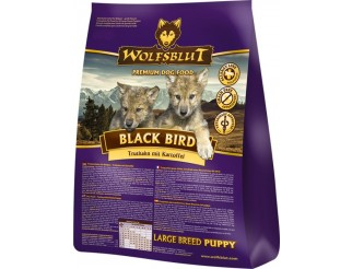 Black Bird Puppy Large Breed 2kg