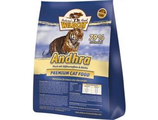 Wildcat Andhra 500gr
